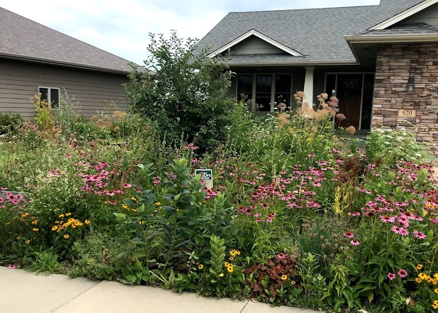 Rock mulch is high maintenance. Chop-and-drop mulching and thick planting is low maintenance.
